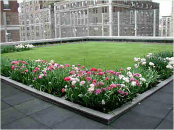 Environmentally-friendly Green Roof System
